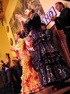 simpecao flamenco
